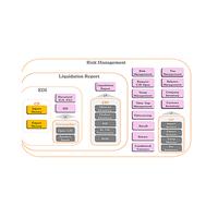 Custom Clearance Management Platform Small-Pin Enterprise, Quick response System Vietnamese Version