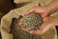 Organic coffee beans