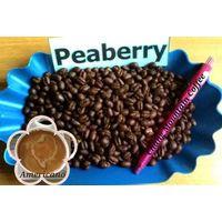 Premium Quality Roasted Arabica Coffee Beans