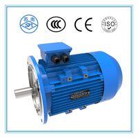 IE1 IE2 IE3 general motor