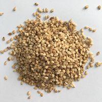 Vietnam sesame seeds