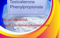 Tes,Testosterone Phenylpropionate,Testosterone Phenylpropionate Powder Anabolic Steroid