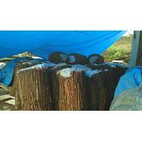 Indonesia cinnamon