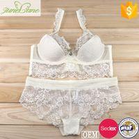 Hot images lace bra with transparent boyshort panty fancy lingerie panty bra