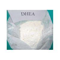Dehydroepiandrosterone CAS 53-43-0