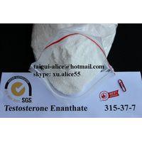 Testosterone Enanthate CAS:315-37-7 Raw Steroid Powder Test E