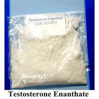 Testosterone Powder Testosterone Enanthate