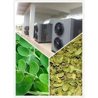 moringa leaf drying machine