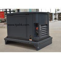 EA16D NG,LPG generator home standby genset