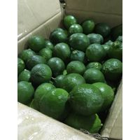 Fresh Lime seedless