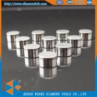 Polycrystalline Diamond PDC Cutter for Oil Bit&PDC Thrust Bearing thumbnail image