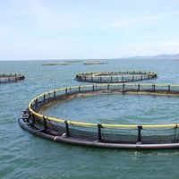 HDPE Circular aquaculture equipment floating farming fish net cage