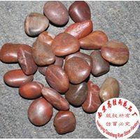 beach pebble thumbnail image