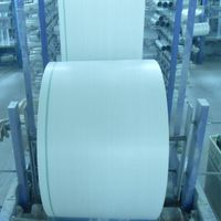PP Woven Fabric/Sack Rolls for Cement bag,Flour bag,Rice bag