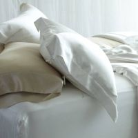silk pillow case thumbnail image