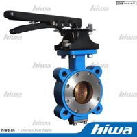 B50 Series High Performance butterfly valve
