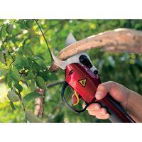 Electric Pruning Shears thumbnail image