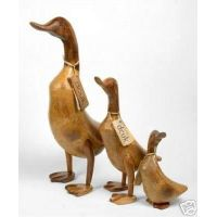 bali duck bamboo root