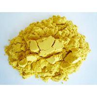 Pumpkin Powder (spray-drying) thumbnail image