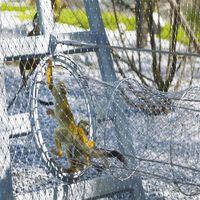Zoo Enclosure Mesh Steel Cable Aviary Mesh thumbnail image