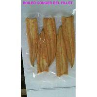 frozen boiled conger eel fillet