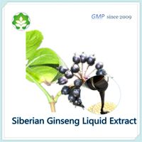 eleutherococcus senticosus extract in powder form fit for energy drink