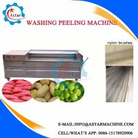 Export to Europe Brush Roller Potato Washer and Peeler