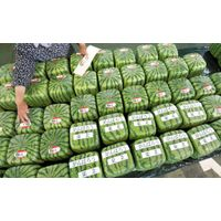 All type of fresh fruits availaible thumbnail image