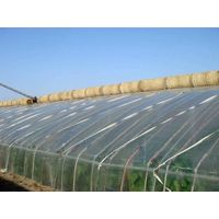 UV-anti 200micron Greenhouse film in Plastic film for sale