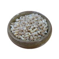 op Quality Wheat Grain Factory Direct Sale Wheat Grain