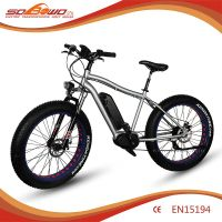 Electric Bike SOBOWO S36 250W Center Motor