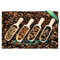 Coffee Powder Import To Shenzhen Logistics Service
