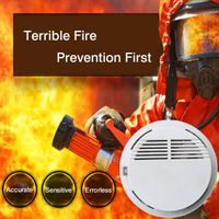 ZigBee Smoke Detector in House Security Systems thumbnail image
