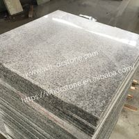 China gray granite G602-Paving Stone