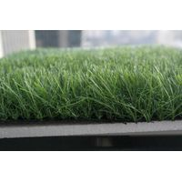 Artificial Turf for Landscaping thumbnail image