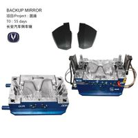 Auto Backup Mirror Mould