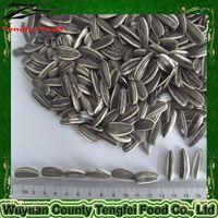 2013 new crop sunflower seeds 5009