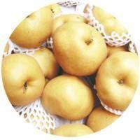 Oriental pear