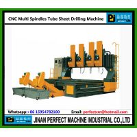 Multi Heads CNC Drilling Machine for Tube Sheet