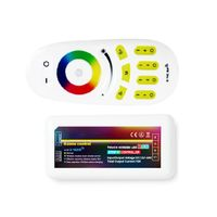 2.4GHz 4-Zone Color Temperature LED Strip Controller