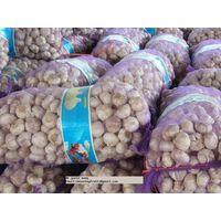 2011 fresh garlic of China thumbnail image