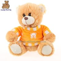 Stuffed Teddy Bear with T-shirt