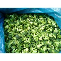 healthy frozen style IQF broccoli