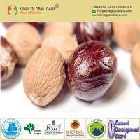 Best Quality Indian Nutmeg Without Shell thumbnail image