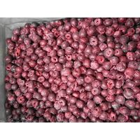 Deep frozen sour cherry