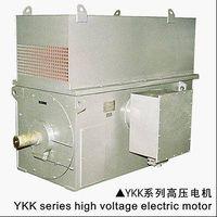 YKK Series HV Squirrel Cage Motor