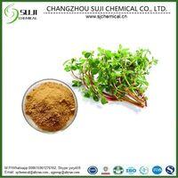 Purslane Extract/ Portulaca Oleracea Extract, CAS: 290-201-1