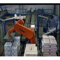 Robot System Integration