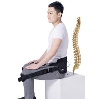 Lumbar Support for Back Pain office