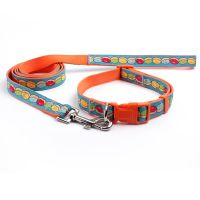 2018 personalized custom dog collar and leash with heat transfer printed